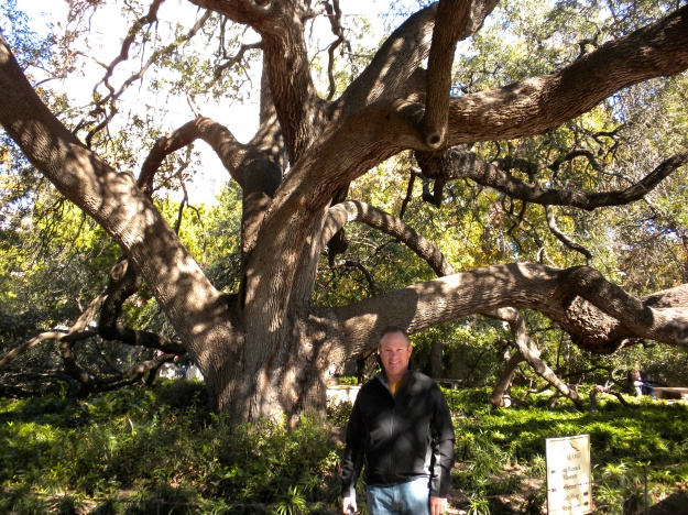 Mike at the Alamo - huge Oak Tree