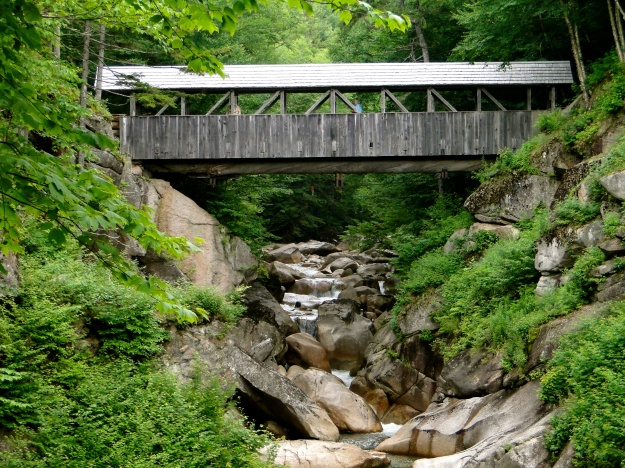 Sentinel Bridge, a large pine tree (175 ft long, 16 feet around) forms the bottom of the bridge