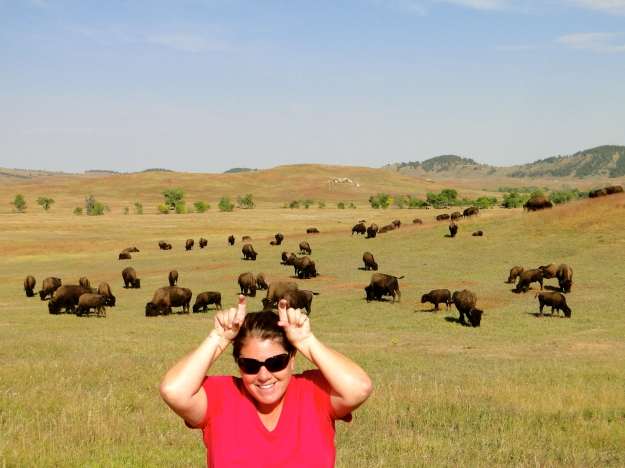 Wildlife Loop Road, my Tatanka impression.  Dances with Wolves was filmed here