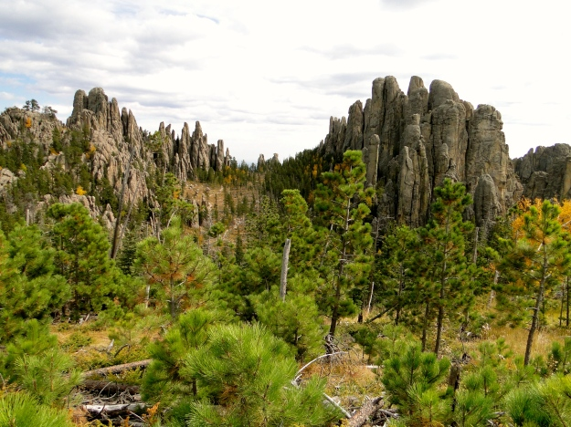 Great scenery on our hike in Custer State Park