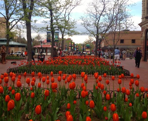 Pearl Street, Boulder