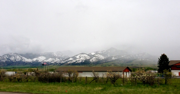 We woke up to snow in the lowlands, Bozeman